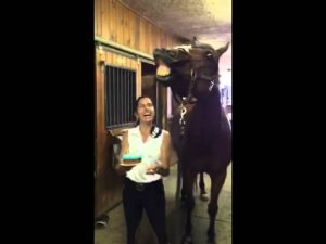 (VIDEO) Horse Blows Out His Birthday Candles