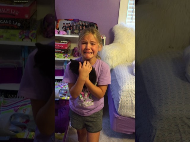Adorable girl meets kitten for the first time and cries tears of pure joy!
