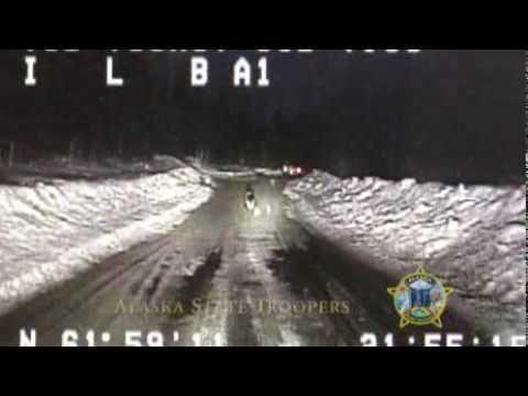 Heroic German Shepherd Dog Leads Alaskan State Trooper To Burning Home